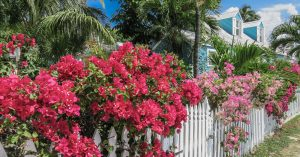 Colonial Dunmore Town on Harbour Island, Eleuthera Island the out islands Bahamas.