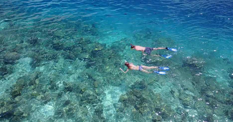 Bahamas Snorkeling locations, discover the best snorkeling in Bahamas, from Staniel Cay, to Green Turtle Cay, the Exumas and the Abacos. Take a Day Trip to Bahamas from FLorida with Bahamas Air Tours