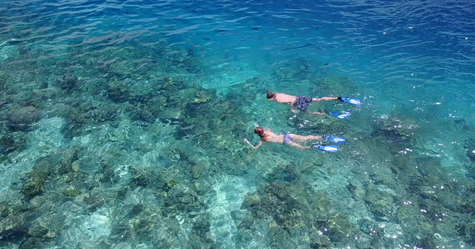 Day Trips to Bahamas Snorkeling. discover the best snorkeling in Bahamas, from Staniel Cay, to Green Turtle Cay, the Exumas and the Abacos. Take a Day Trip to Bahamas from FLorida with Bahamas Air Tours