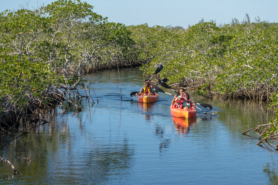 Freeport Bahamas Excursions kayaking Lucaya National Park