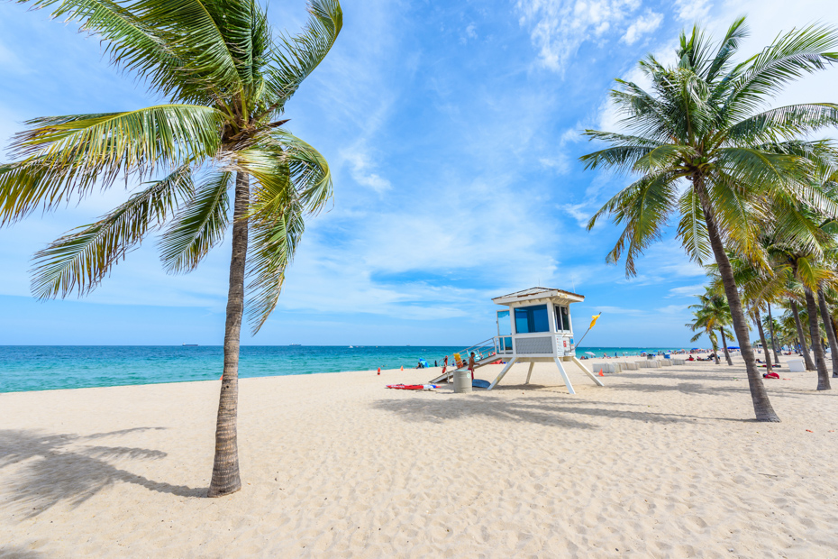 Paradise beach at Fort Lauderdale in Florida on a beautiful sumer day. Tropical beach with palms at white beach. Travel destination for vacation in USA. For all the top things to do in Fort Lauderdale, or what to do in Fort Lauderdale that you haven't thought of yet, check out this comprehensive list of fun things to do in Fort Lauderdale and all Fort Lauderdale activities such us a day tour Bahamas from Bahamas Air Tours.