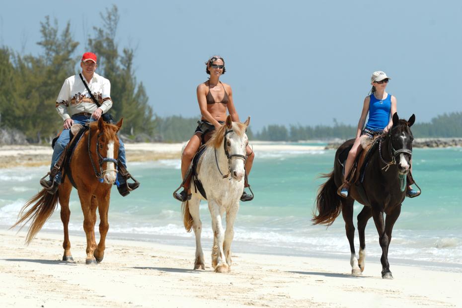 Bahamas horseback riding day tour on the beach.