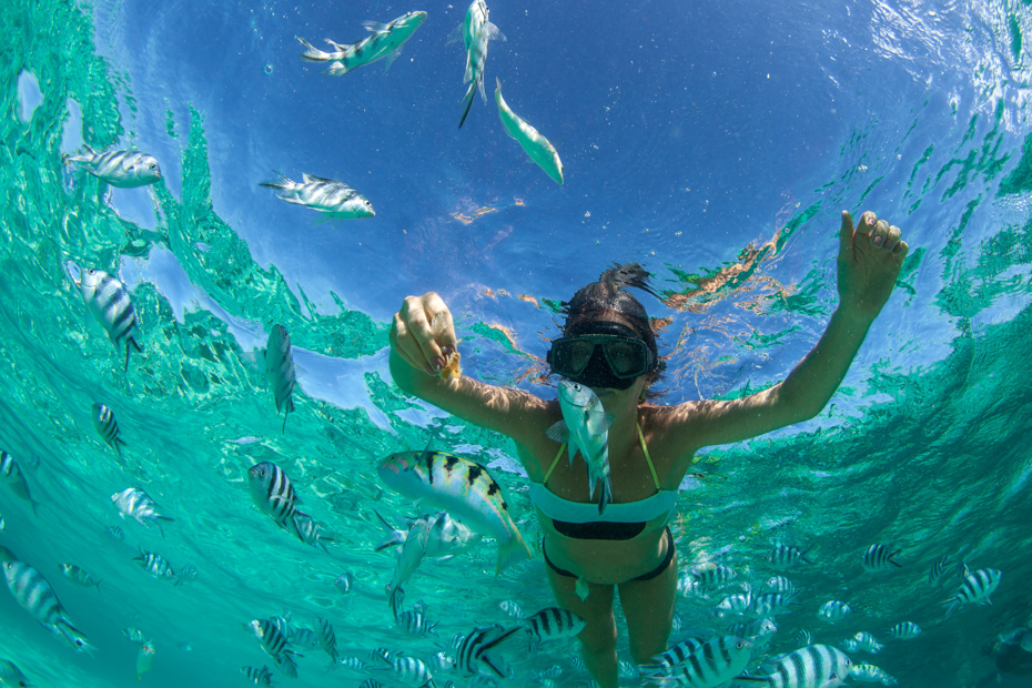 Nassau Snorkeling Excursions and the best snorkeling in Nassau New Providence