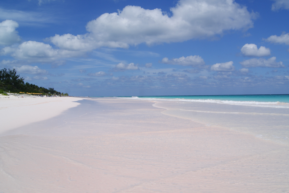 Pink sands Beach Bahamas on Harbour Island.