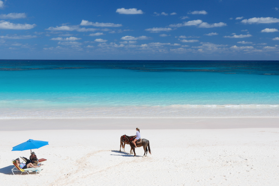 Pink Sands Beach Bahamas horse riding on Harbour Island, Eleuthera. Explore the Bahamas Islands with Bahamas Day Tours.