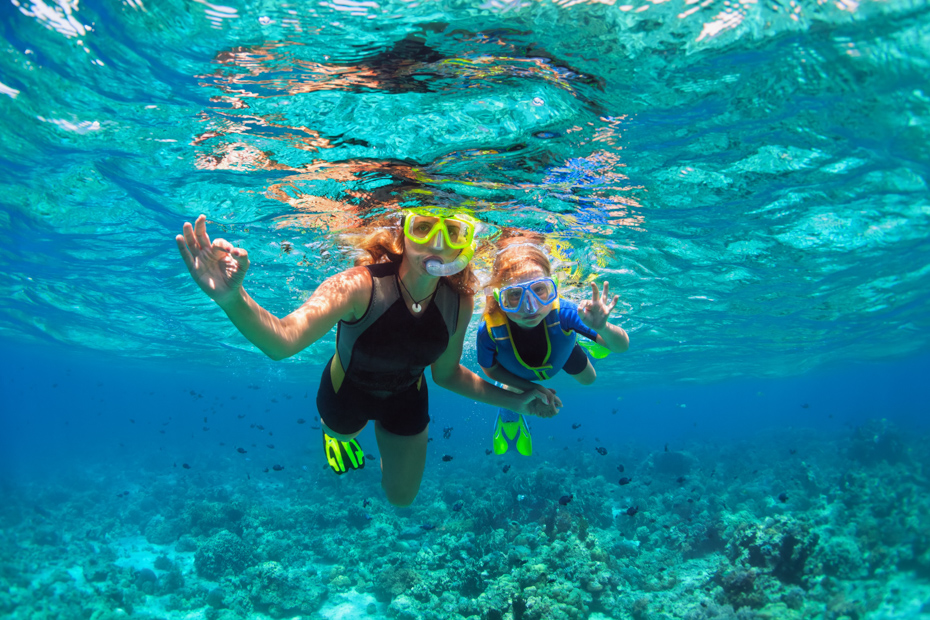 Snorkeling is a popular Bahamas excursions no matter where you are. You can also swim with Pigs Nassau on an Exuma pigs excursion with Bahamas Air TOurs.