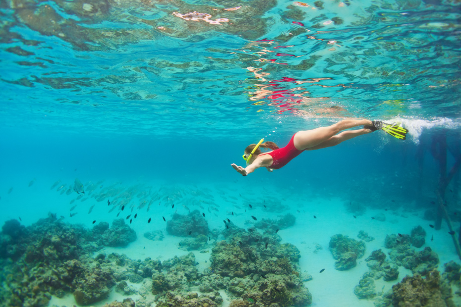 Snorkeling is popular on any Bahamas holidays. Bahamas Air Tours offers many Bahamas trip packages for any trip to Bahamas.