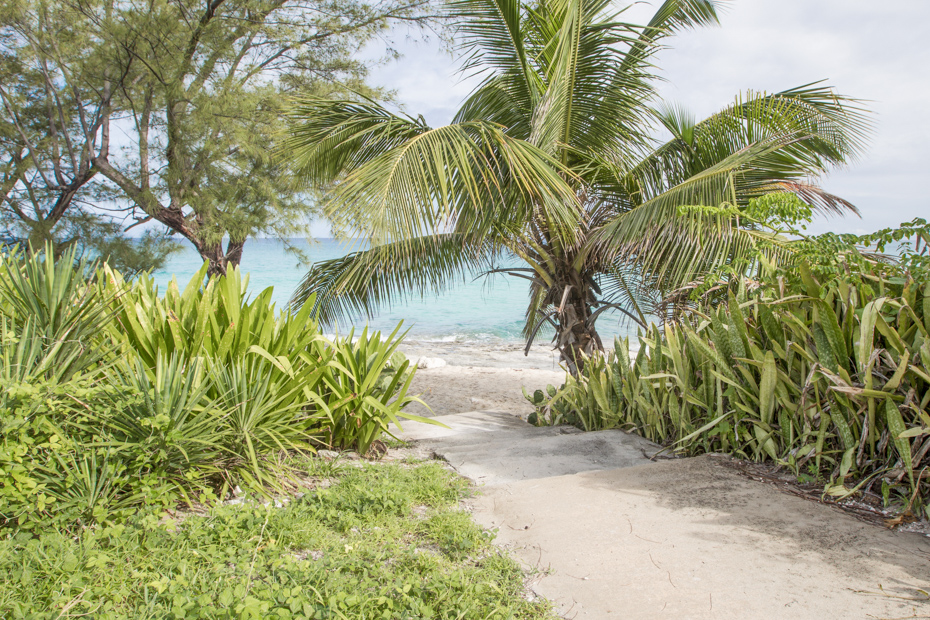 Spend a day on the Bimini beaches of your Bahamas day trip. There are plenty of things to do in Bimini on your Bahamas vacation.