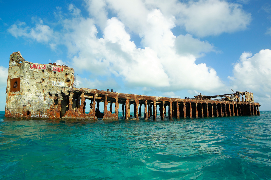 The shipwreck of Sapona can be seen on a Bimini day cruise. Any Bahamas vacation or Bimini cruise from Miami is filled with many Bahamas attractions you can't see anywhere else.