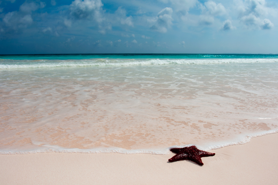Harbour Island's Pink Sand Beach is among the best Bahamas beach. It is one of the best beaches in Nassau of all top beaches in the Bahamas. Come with Bahamas Air Tours on a Bahamas vacation today.