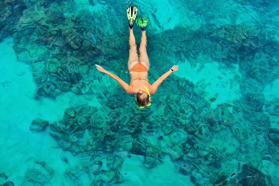 Snorkeling is a top Bahamas things to do. Know what to do in the Bahamas before you arrive with this guide. Know the best places in Bahamas. Bahamas Air Tours gives you your guide to Day Trips to Bahamas.