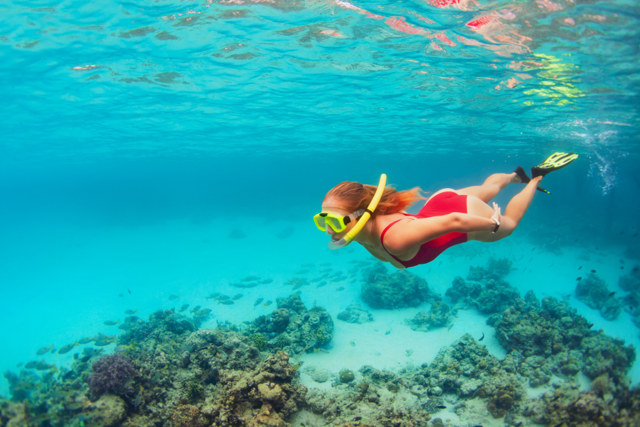 Snorkeling in Stirrup Cay Island of the Bahamas. Little Stirrup Cay and Great Stirrup Cay Bahamas are Norwegian cruise private island territiories. Go swimming with pigs Bahamas to see the Exuma pigs of Pig Beach on a trip to Bahamas.