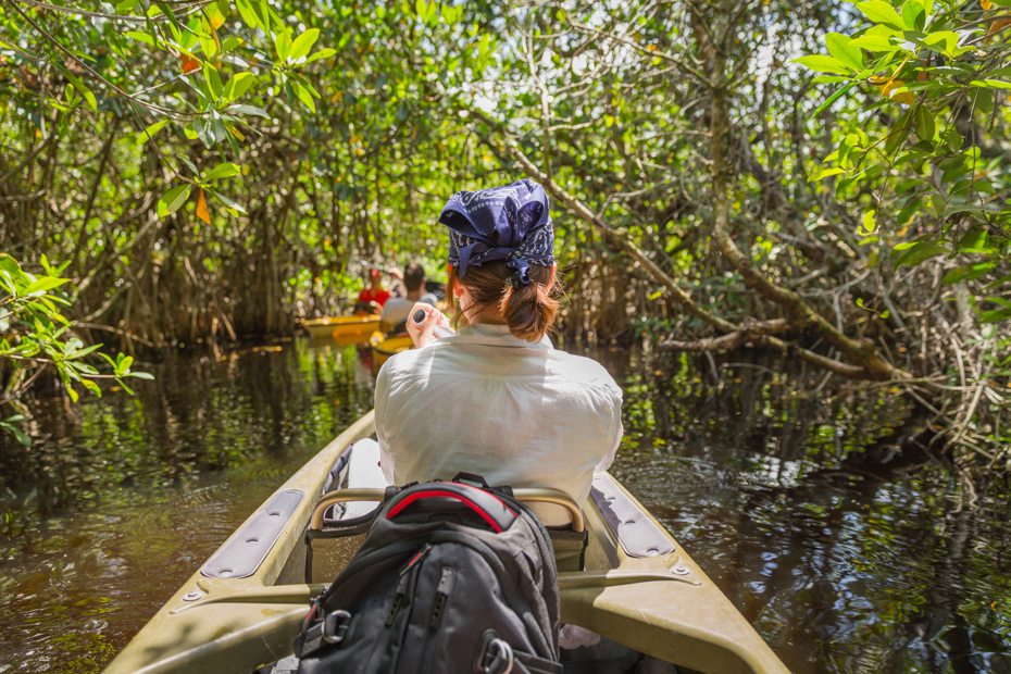 Kayak through mangrove forests in the Everglades. That and more fun things to do in Orlando Florida for couples on your Florida vacation.