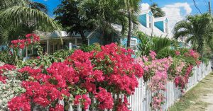 Harbour Island Day trip from Nassau to Dunmore Town Bahamas. Visit the colonial Dunmore Town, original capital of the Bahamas and explore the small lanes with our Harbour Island day Trip from Nassau by Plane.