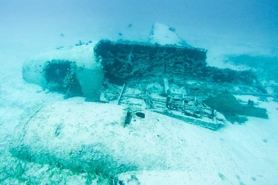 Getting from Nassau to Exuma to visit the famous underwater Bahamas Plane Wreck at Staniel Cay. Along with visiting Staniel Cay plane wreck you can also how to get to pig beach from nassau on a pig island tours from Nassau by plane or boat.