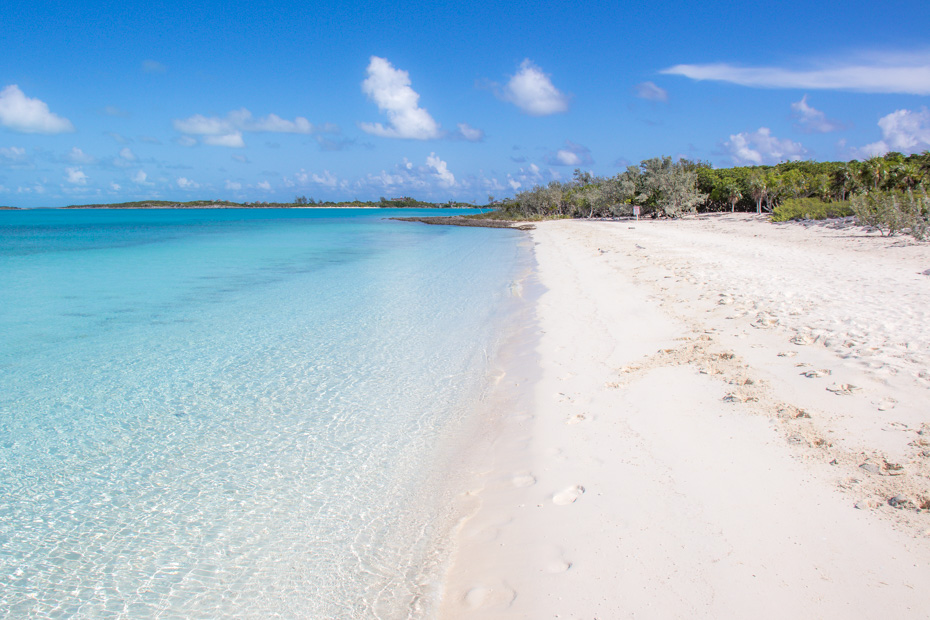Pig Beach Bahamas is the home of the Staniel Cay Pigs - Swimming Pigs that live on Big Major Cay in the Exuma Cays. The island with pigs is nextdoor to Staniel Cay Bahamas. Visit the Staniel Cay Pigs on a Bahamas Day Trip to Pig BEach from Nassau with Bahamas Air Tours.