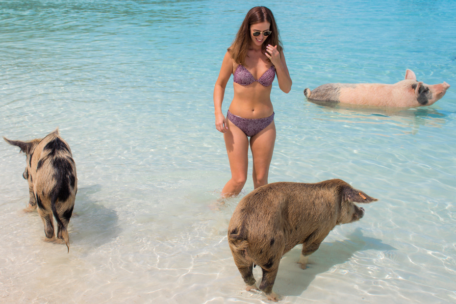 Best things to do in south beach Miami swimming with pigs at pig beach, big Major Cay in the Exuma islands on a fabulous Miami to Bahamas Day Trip from Miami Beach Florida