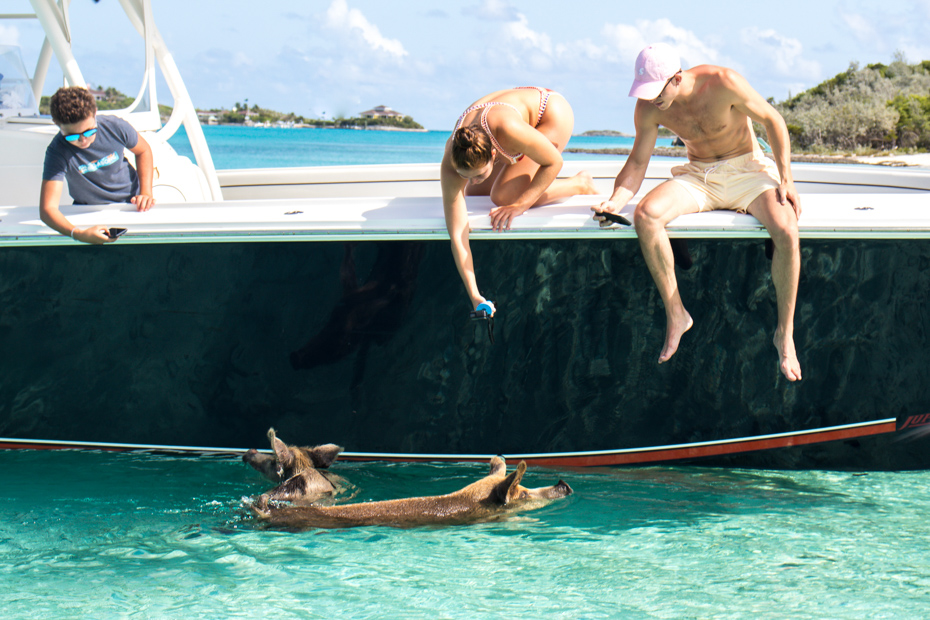 8 Top Attractions to See on Exuma Tours from Nassau